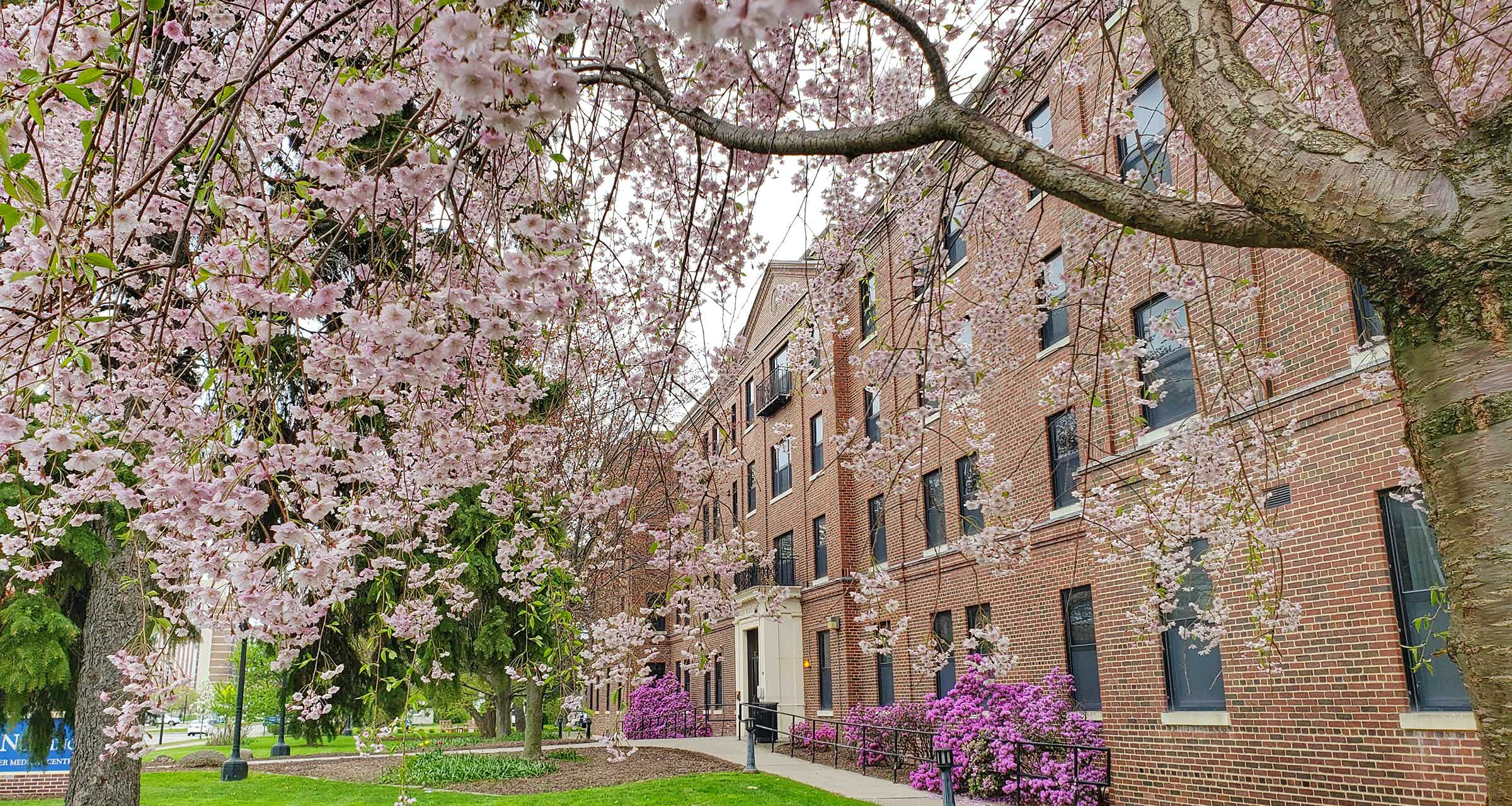 Front of Helen Wood Hall in Spring